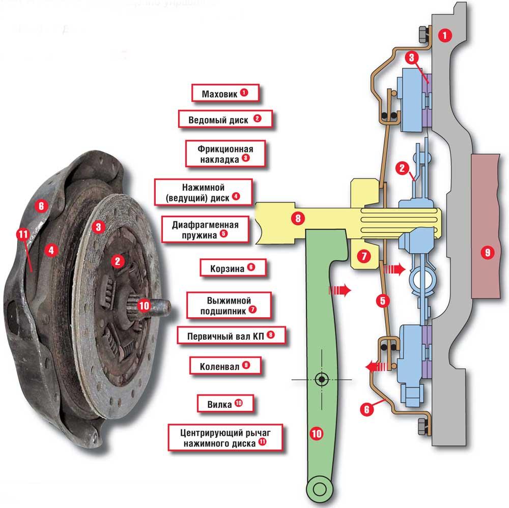 Схема сцепления авто
